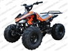 "TaoTao/Tao Motor Cheetah, G125 | CA Legal | 19""/18"" Tires, Full Auto ATV"