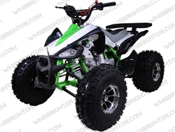 "TaoTao/Tao Motor New Cheetah | CA Legal | 19""/18"" Tires, Full Auto ATV"