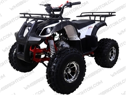 TaoTao/Tao Motor New TFORCE | Full Auto ATV