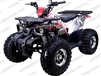 "TaoTao/Tao Motor Raptor | CA Legal | 19""/18"" Tires, Full Auto  ATV"