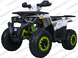 "TaoTao/Tao Motor Raptor 200 | CA Legal | 23""/22"" Tires, Full Auto ATV"