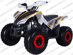 "TaoTao/Tao Motor REX | CA Legal | 19""/18"" Tires, Full Auto ATV"