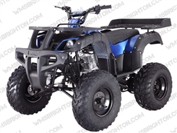 "TaoTao/Tao Motor Rhino 250 | 23""/22"" Tires, Full Manual ATV"