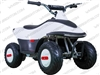 "TaoTao/Tao Motor Rover 350 | 12"" Tires, 350W 24V Electric ATV"