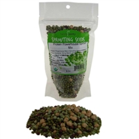 Organic Protein Powerhouse Sprouting Seed Mix