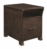 New Jersey Zone Item-Coaster 801754 FILE CABINET