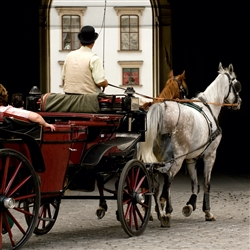 Vienna City Tour - Vienna Walking Tour & Carriage Ride