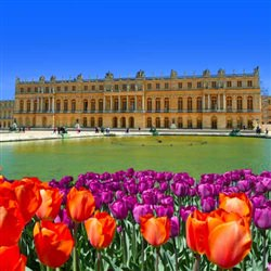City Tours - Palace of Versailles