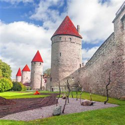 Shore Excursions - Tallinn Highlights and Rocca Al Mare