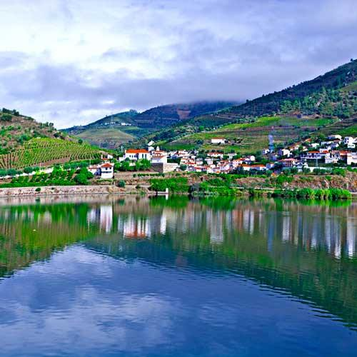 Porto Shore Trips - Experience Wine of the Douro Valley
