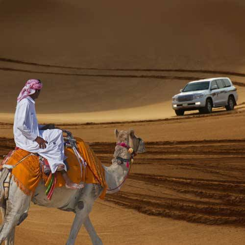 Dubai Shore Trips - Desert Safari Adventure with BBQ Dinner
