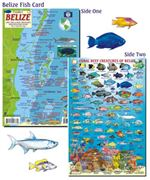 Belize Fish Card