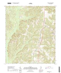 Abbeville West Alabama - 24k Topo Map