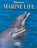Playing Cards Marine Life
