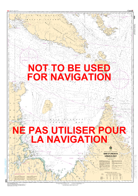 5300 - Ungava Bay - Canadian Hydrographic Service (CHS)'s exceptional nautical charts and navigational products help ensure the safe navigation of Canada's waterways. These charts are the 'road maps' that guide mariners safely from port to port. With incr