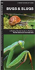 Bugs & Slugs folding pocket guide. A Folding Pocket Guide to Familiar North American Invertebrates. This beautifully illustrated guide describes bees, ants, beetles, butterflies, moths, flying insects, grasshoppers, cicadas, true bugs, spiders, household