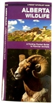 Identify Wildlife in Alberta - Reference Guide. Alberta Wildlife is the perfect pocket-sized, folding guide for the nature enthusiast. The beautifully illustrated guide highlights over 140 familiar species of birds, mammals, reptiles, amphibians, fishes a