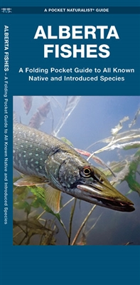 Identifying Fish in Alberta - Reference Card. Co-authored by experts Dr. Sean Rogers and Matthew J. Morris, this guide highlights 54 fish species that are native to Alberta and 16 species that have been introduced to the province. This beautifully illustr