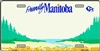 Friendly Manitoba - Metal License Plate. This reproduction license plate reads Friendly Manitoba with a buffalo logo. Heavy duty metal that can go on the front of the car or in your man cave.