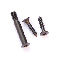 DIP DP-19016 CZ-452 Scout Action Screw Kit