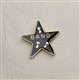 Award Star 'Band' Enameled Pin