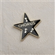 Award Star 'Chorus' Enameled Pin