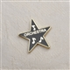 Award Star 'Orchestra' Enameled Pin