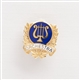 Gold Laurels & Lyre 'Orchestra' Mini Pin