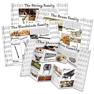 Music Instrument Families Poster Set