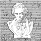 The Genius of Beethoven Napkins