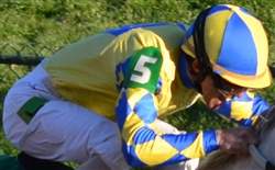 Arm Numbers For Jockeys
