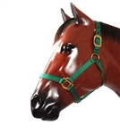 Nylon T Halter - Horse Racing Equipment