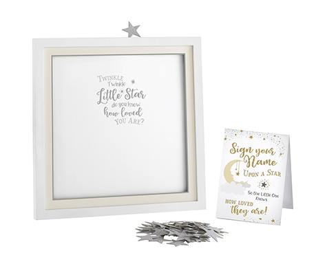 Twinkle Shower Guest Signing Guest Book