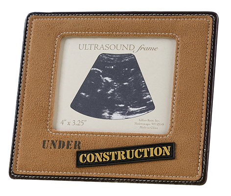 Ultrasound Picture Frame Under Construction