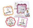 Pink Watercolor Baby Belly Stickers Set
