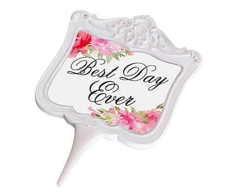 Watercolor Best Day Ever Cake Topper