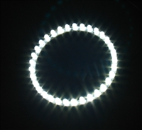 33 LED Angel Eyes Circle LED Light - Devil Eyez, (100mm)
