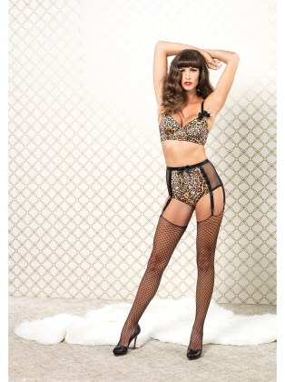 Lingerie Bra & High Waisted 6 hook Garter