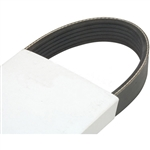 FAN BELT (SERPENTINE) FOR HYSTER : 2036497