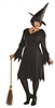 Wicked Witch Plus Size Adult Costume