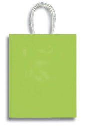 APPLE GREEN SMALL CLAY COATED BAG