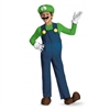 Super Mario Brothers Luigi Classic Kids Costume - Large
