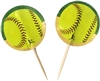 Girl's Fastpitch Softball Party Picks