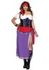 Traveling Gypsy 1X/2X Plus Size Adult costume