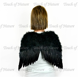 Angel Wings Black 20X16 With Halo