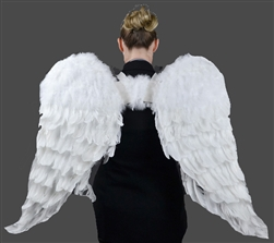 Angel Wings Adult Size