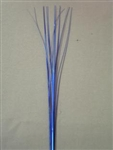 ROYAL BLUE ONION GRASS
