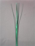 GREEN ONION GRASS
