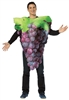 Bunch Of Purple Grapes Adult Costume