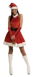 SANTA'S INSPIRATION ADULT COSTUME - SMALL